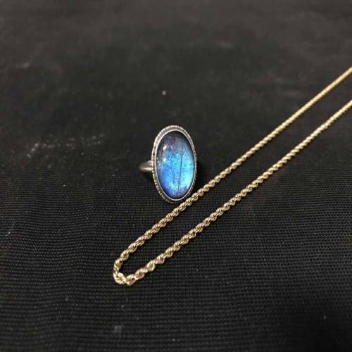 Lot 14-NINE CARAT GOLD CHAIN along with a butterfly wing ...