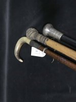 Lot 101 - THREE VARIOUS WALKING CANES along with a...