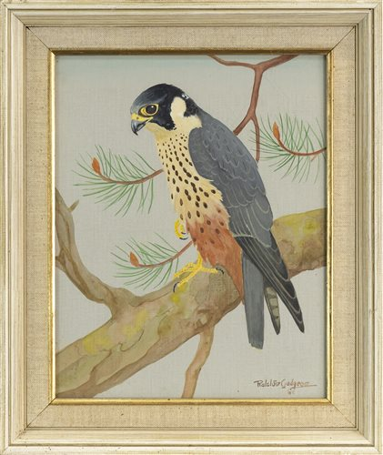 Lot 400-HOBBY (FALCONS), BY RALSTON GUDGEON