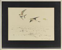 Lot 627-PRATINCOLES AND BLACK-HEADED WAGTAILS, BY JOHN BUSBY