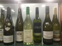 Lot 5-A SELECTION OF WHITE WINE INCLUDING PETIT CHABLIS AND CHENIN BLANC - TWELVE BOTTLES