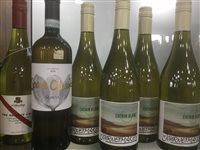 Lot 22-A SELECTION OF CHENIN BLANC AND OTHER WHITE WINE - TWELVE BOTTLES