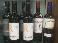 Lot 23-A SELECTION OF SYRAH AND OTHER RED WINE - TWELVE BOTTLES
