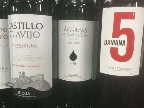 Lot 31-A SELECTION OF RIOJA AND OTHER RED WINE - TWELVE BOTTLES