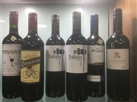 Lot 33-A SELECTION OF MERLOT AND OTHER RED WINE - TWELVE BOTTLES
