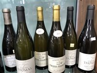 Lot 43-A SELECTION OF CHARDONNAY AND OTHER WHITE WINE - TWELVE BOTTLES