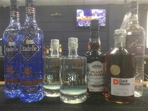 Lot 55-A SELECTION OF RUM, VODKA AND GIN - SEVEN BOTTLES