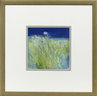 Lot 146 - HEBRIDEAN SUMMER, BY MAY BYRNE