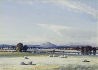 Lot 495-SHEEP GRAZING, A WATERCOLOUR BY TOM CAMPBELL
