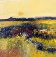 Lot 2285 - MAY BYRNE, SUMMER GOLDS oil on canvas, signed...