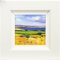 Lot 583-SUMMER FIELDS, AN OIL BY LIN PATTULLO