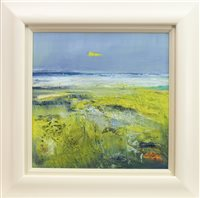Lot 670 - STORM LIGHT, HEBRIDES, AN OIL BY MAY BYRNE