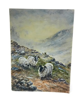 Lot 1271-A WATERCOLOUR OF SHEEP BY ERNEST BARKER