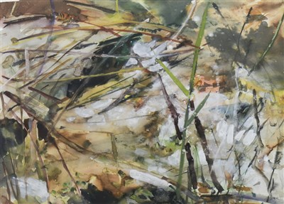 Lot 539-BUBBLING WATER AND REEDS, A WATERCOLOUR BY SHONA BARR