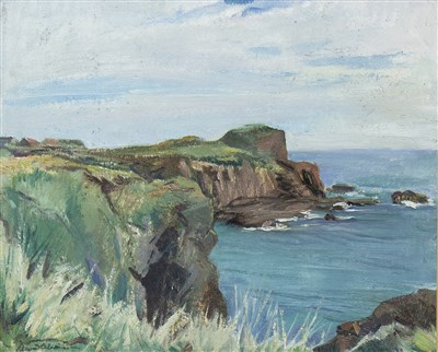 Lot 432-ROCKS AT KINNEFF, AN OIL ON BOARD BY DAVID ALISON