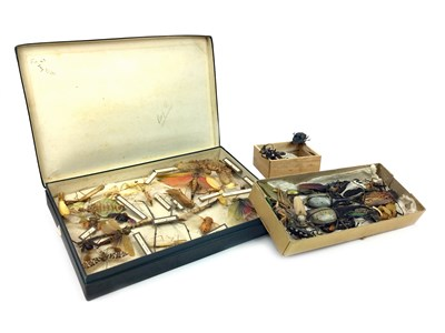 Lot 824-A COLLECTION OF EARLY TO MID 20TH CENTURY INSECTS