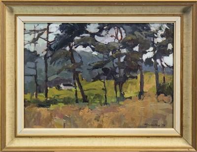 Lot 519-EAGLESHAM, AN OIL BY SHEILA MACMILLAN