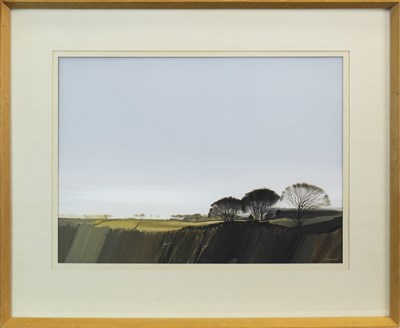 Lot 507-MORNING LANDSCAPE, A MIXED MEDIA BY DONALD SHANNON