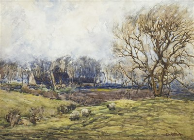 Lot 424-SHEEP GRAZING IN WOODLAND, A WATERCOLOUR BY F MCALLISTER