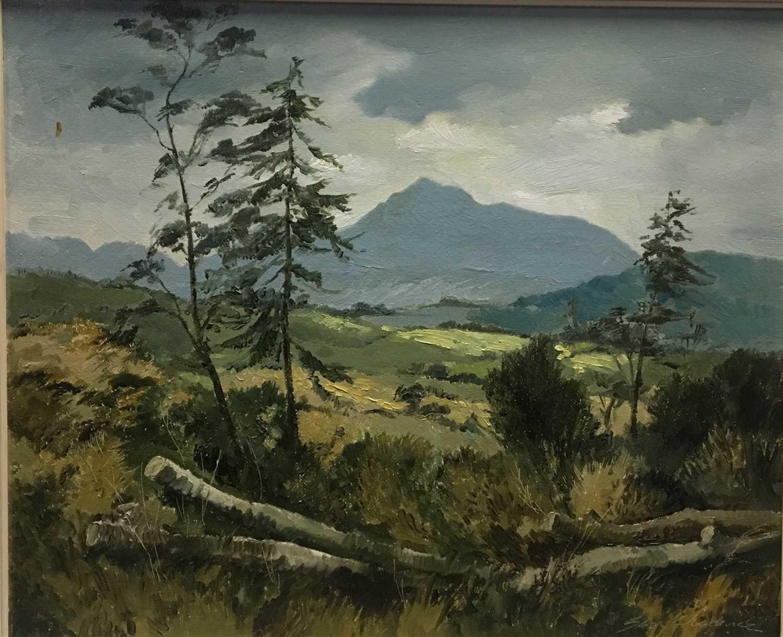 Lot 608-GOATFELL, AN OIL BY SAM CHADWICK