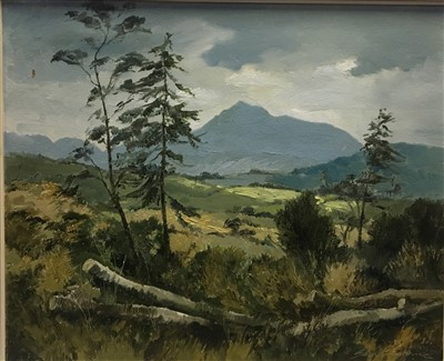 Lot 608-GOATFELL, AN OIL BY SAM CHADWICK