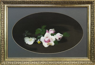 Lot 520-PINK AND WHITE ROSES, AN OIL BY JAMES STUART PARK
