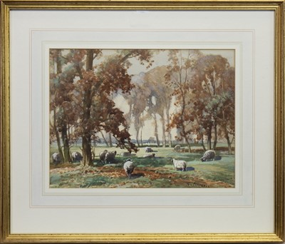 Lot 404-SHEEP GRAZING IN WOODLANDS, A WATERCOLOUR BY TOM CAMPBELL