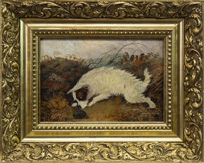 Lot 417-A PAIR OF 19TH CENTURY OIL PAINTINGS OF TERRIERS