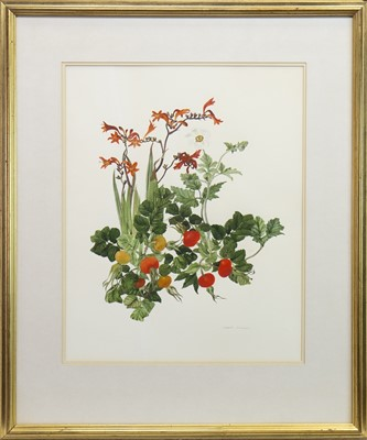 Lot 505-ROSEHIPS AND FLOWERS, A WATERCOLOUR BY ELSPETH HARRIGAN