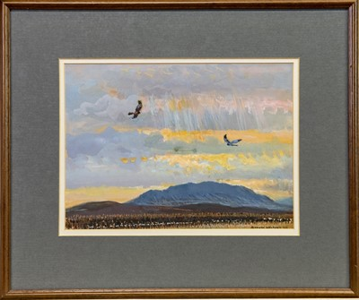 Lot 17-HEN HARRIERS, A GOUACHE BY DONALD WATSON