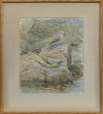 Lot 18-GREY WAGTAILS, A WATERCOLOUR BY DONALD WATSON
