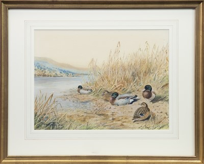 Lot 7-DUCKS BY THE RIVER, A WATERCOLOUR BY CHARLES STANLEY TODD