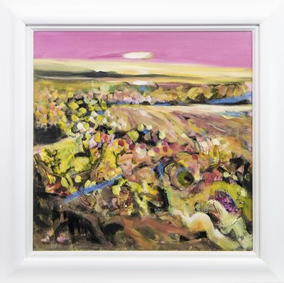 Lot 634 - SUMMER MORNING ON UIST, A MIXED MEDIA BY MAY BYRNE