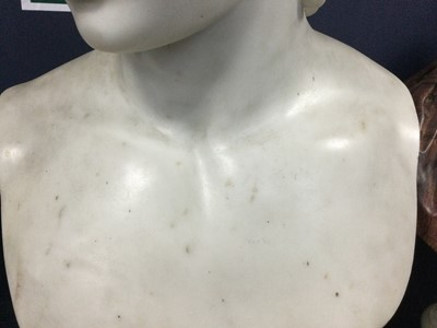 Lot 1204 - A 19TH CENTURY CARRARA MARBLE BUST OF ANTINOUS