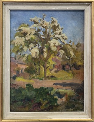 Lot 410-TREES IN BLOSSOM AT ORCHARD, AN OIL ATTRIBUTED TO WILLIAM EDWARD WIGLEY