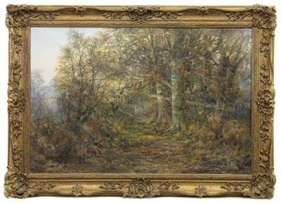 Lot 102-PHEASANTS ON A WOODLAND PATH, AN OIL BY COLIN W BURNS