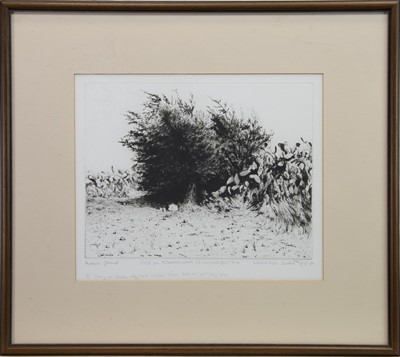 Lot 401-FIELD ON ALBATTAN WITH CACTUS, AN ETCHING BY WALID ABU-SHAKRA