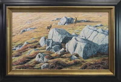 "Lot 132 - ""BLUE BOULDERS"" RED DEER STAGS , AN OIL BY MARTIN RIDLEY"