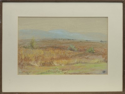 Lot 61 - BEN CRUACHAN FROM CONNEL, A PATSTEL BY MARY YATES