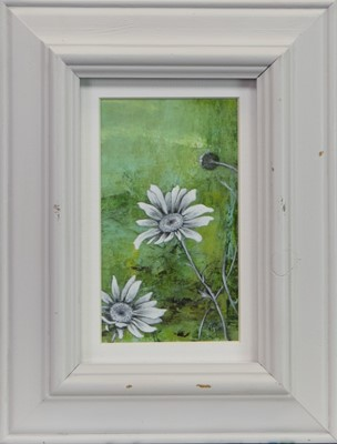 Lot 508 - SPRING DAISIES, AN OIL DIPTYCH BY ROS GREEN