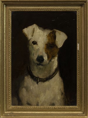 Lot 509 - JACK RUSSEL TERRIER, A SCOTTISH OIL