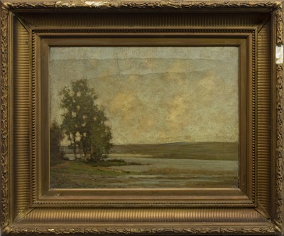 Lot 47 - TREES BY A SHORE, AN OIL BY W MILLER
