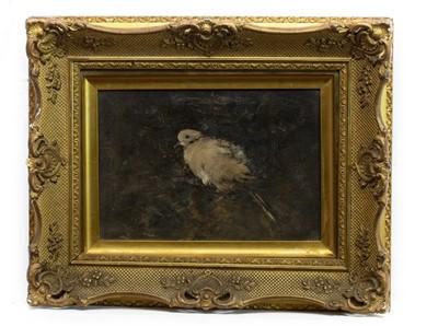 Lot 27 - PERCHED BIRD, A SCOTTISH OIL
