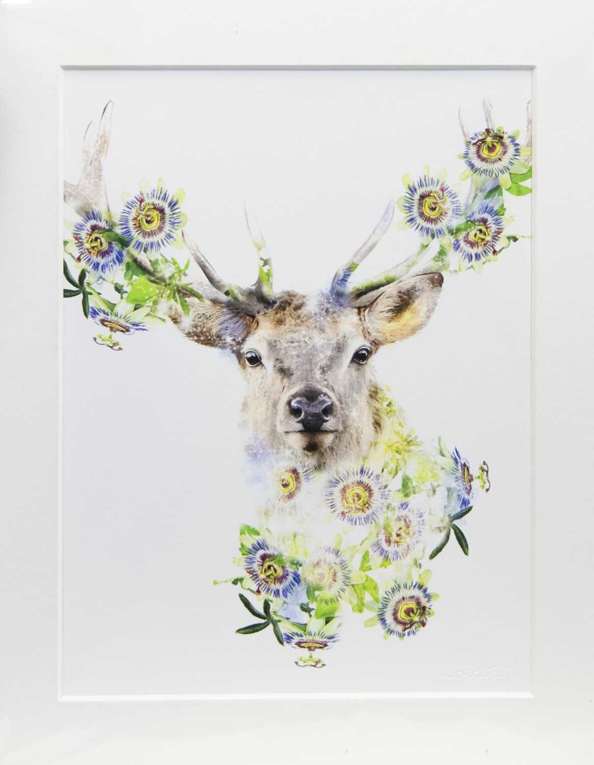Lot 89 - STAG 2, A PRINT BY LOLA DESIGN