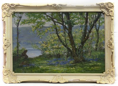 Lot 58 - BLUEBELLS BY THE LOCH, AN OIL BY HUGH CAMERON WILSON