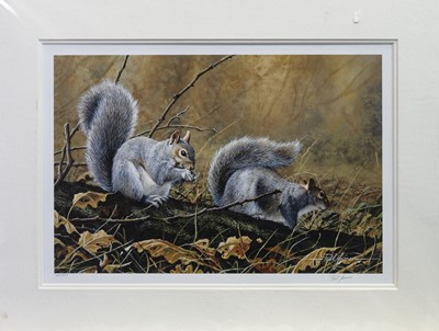 Lot 485 - ANIMAL SELECTIONS, A PRINT BY PAUL JAMES