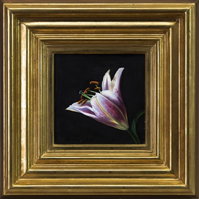 Lot 530 - TIGER LILY, AN OIL BY DAVID WARRILLOW