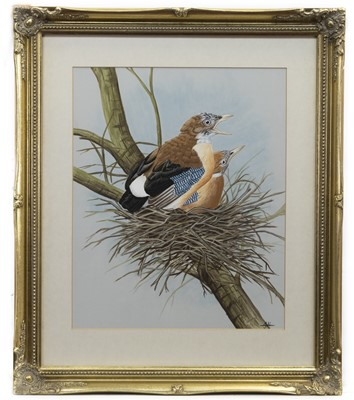 Lot 24 - NESTED BIRDS, A 20TH CENTURY WATERCOLOUR