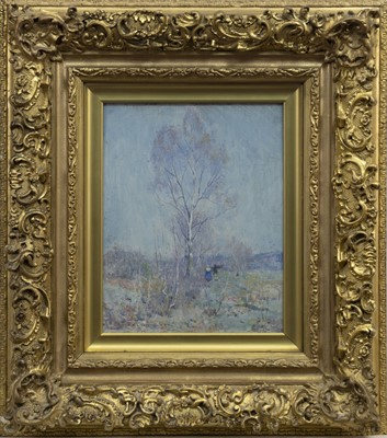 Lot 104 - SILVER BIRCH TREE, AN OIL BY ROBERT MCGOWN COVENTRY