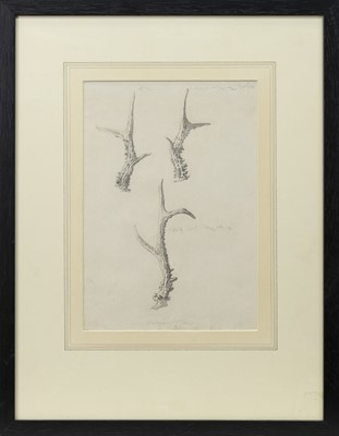 Lot 116 - ORGANIC STUDIES, A PENCIL SKETCH FROM THE CIRCLE OF GRAHAM VIVIAN SUTHERLAND